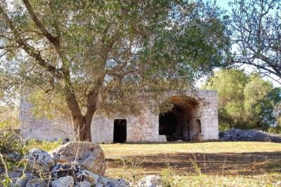 COUNTRYHOUSE WITH TRULLI FOR SALE IN CAROVIGNO, APULIA