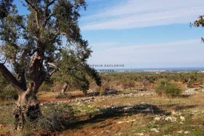 LAND WITH BEAUTIFUL SEA VIEW IN CAROVIGNO, APULIA