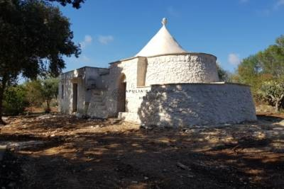 TRULLO WITH LAMIA AND SWIMMING POOL IN CAROVIGNO APULIA