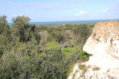 LITTLE LAMIA WITH SEA VIEW FOR SALE IN CAROVIGNO, APULIA
