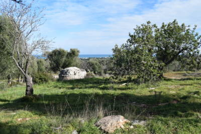 SEA VIEW LAND WITH WITH SARACEN TRULLI FOR SALE IN CAROVIGNO, APULIA