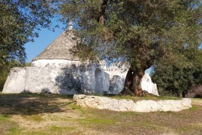PANORAMIC TRULLO FOR SALE IN CAROVIGNO APULIA