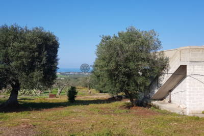 RUSTIC WITH SPECTACULAR SEA VIEW – CAROVIGNO