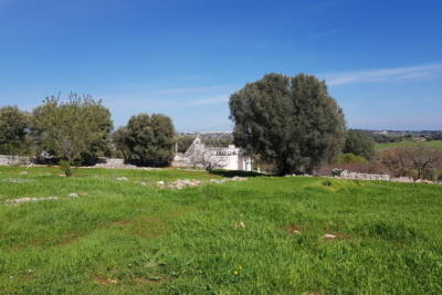 TRULLO AND LAMIA WITH PANORAMIC VIEW – OSTUNI APULIA