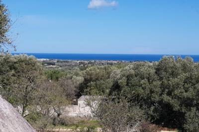 NICE TRULLO WITH SEA VIEW TO RENOVATE – CAROVIGNO