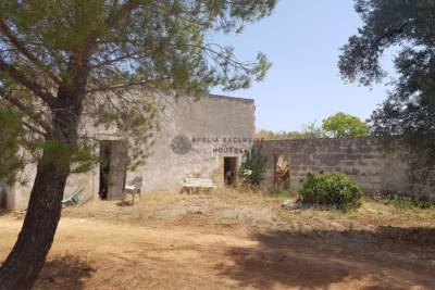 LAMIA FOR SALE IN CAROVIGNO IN PUGLIA