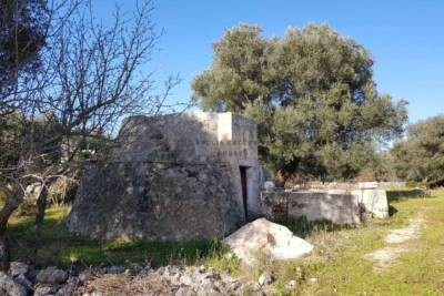 LAND WITH TRULLO FOR SALE IN CAROVIGNO