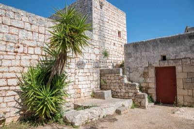 FARMHOUSE WITH APPROVED PROJECT IN OSTUNI